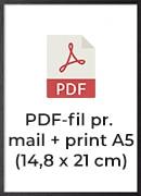 +100,- pr./print