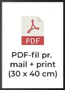 +150,- pr./print