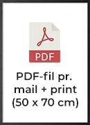 +200,- pr./print