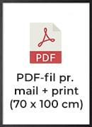 +250,- pr./print